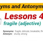 Synonyms and Antonyms Dictionary 42-01